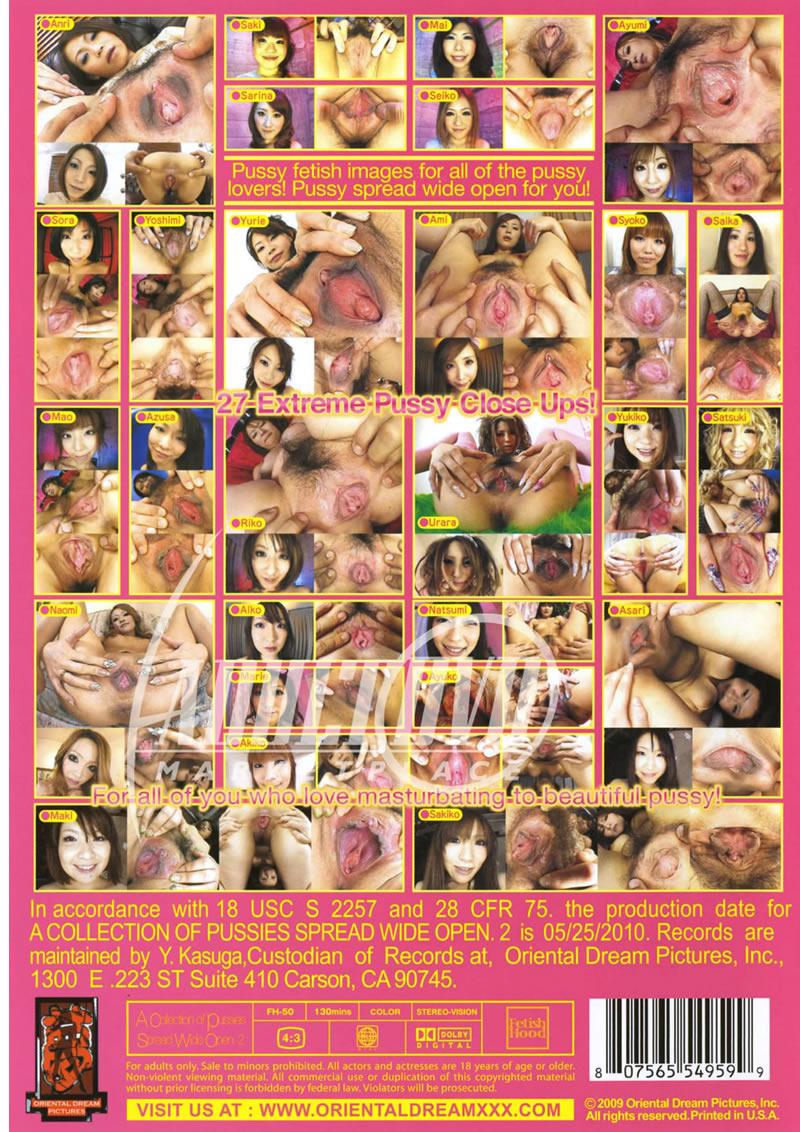 Shyla stylez anal nude