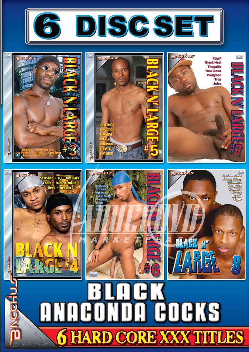 Anaconda Cocks Com black anaconda cocks {6 disc set} - dvd - bacchus