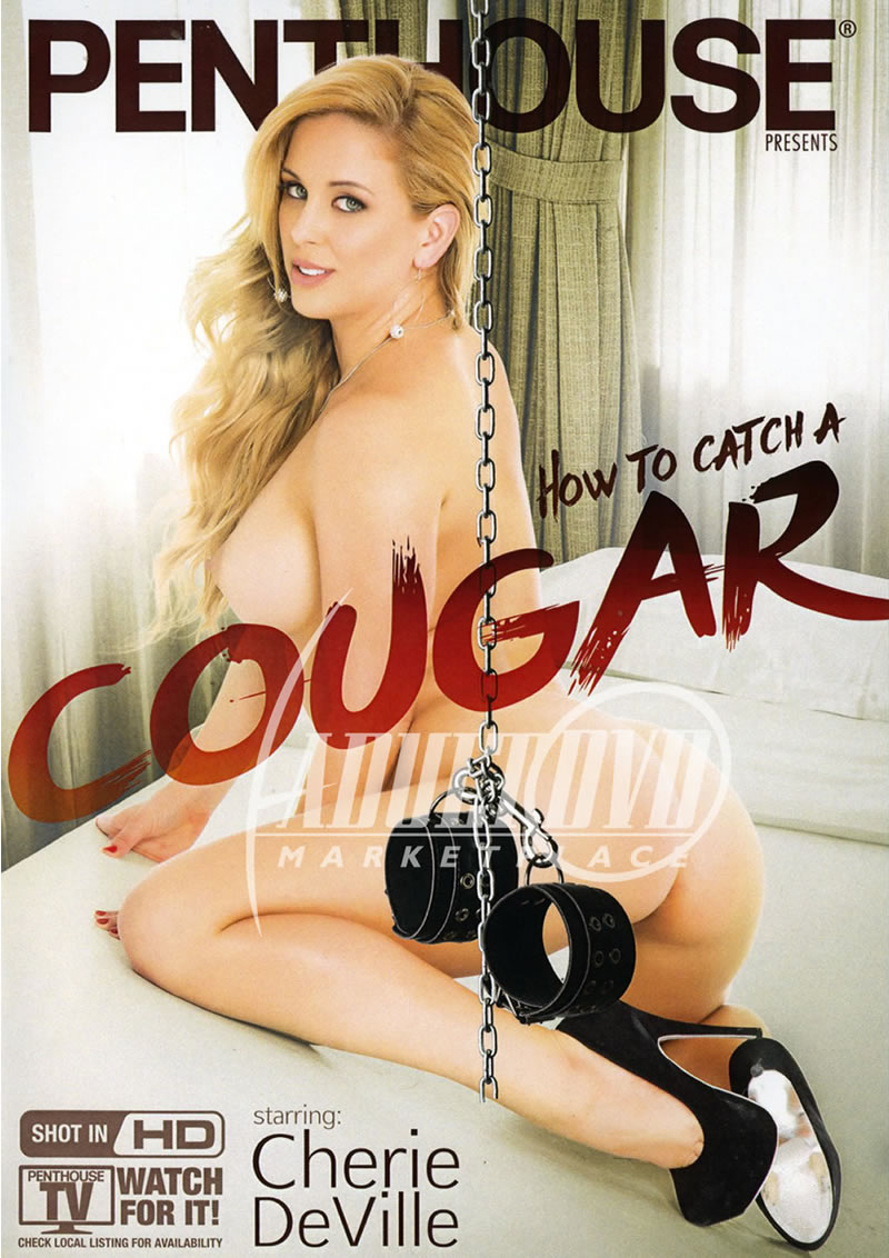 how to catch a cougar penthouse