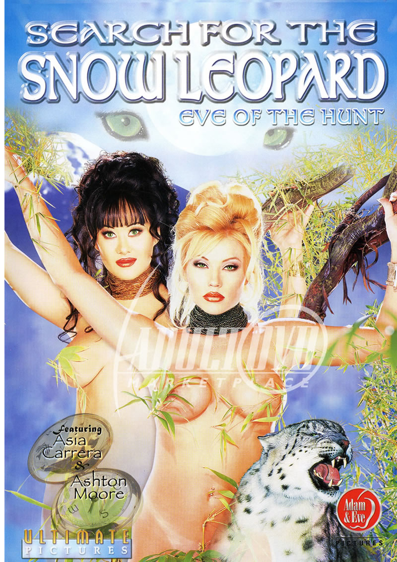 Asia Carrera Anime search for the snow leopard
