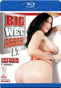 Big Wet Asses 17 (Blu-ray)