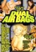 Dual Air Bags