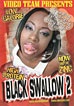 Black Swallow 2