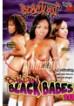 Bangin Black Babes 10