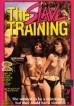 Slave Training, The