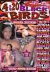 4 & 20 Black Birds