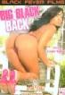 Big Black Back